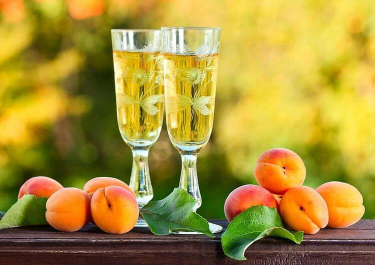 Вино из абрикосов в домашних условиях рецепт