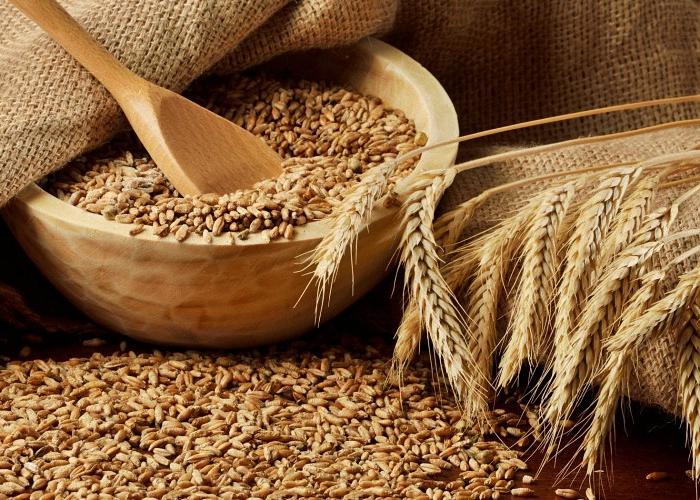 пшеничний самогон